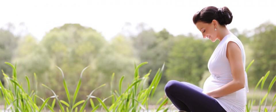 Nėščiosios fotosesija, dantų higiena ir medžiai – kaip šie dalykai susiję